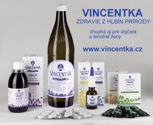 Vincentka-grafika-dojcata-r